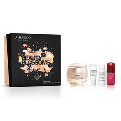 Wrinkle Smoothing Day Cream spf25 Holiday Kit - BENEFIANCE, -25% Winter Sales